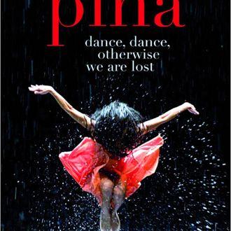 Pina coming soon x8pzpx