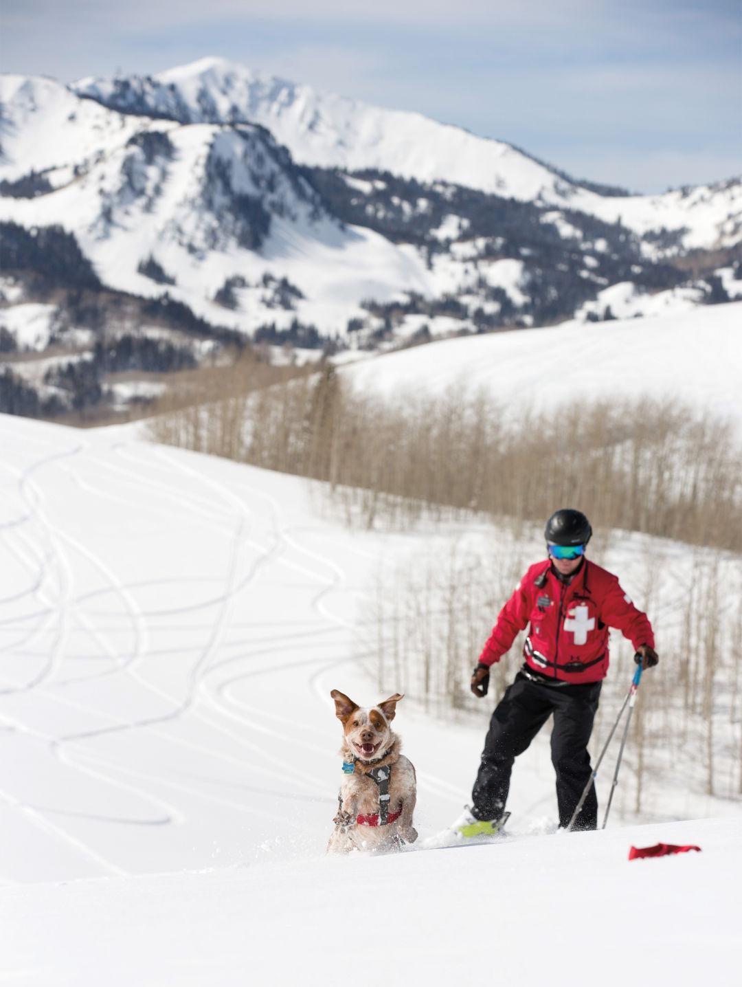 Mark Chytka, avalanche dog coordinator and ski patrol supervisor, and his dog, Rooster