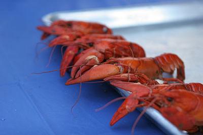 Crawfish festival rxtfvj