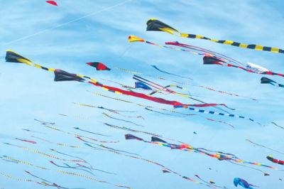 Kite festival washington fm8gwg