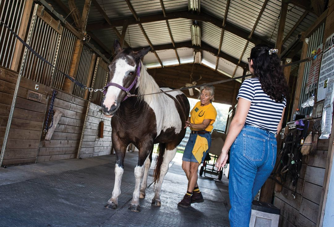The author (in striped shirt) experiences equine therapy at Prospect Riding Center.