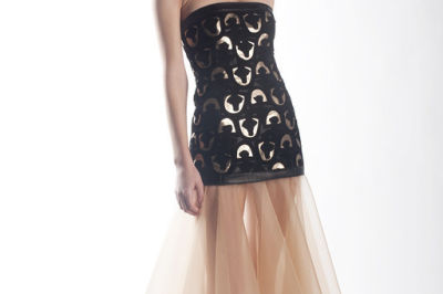 Jamy tarr sheer skirt dvbkjj