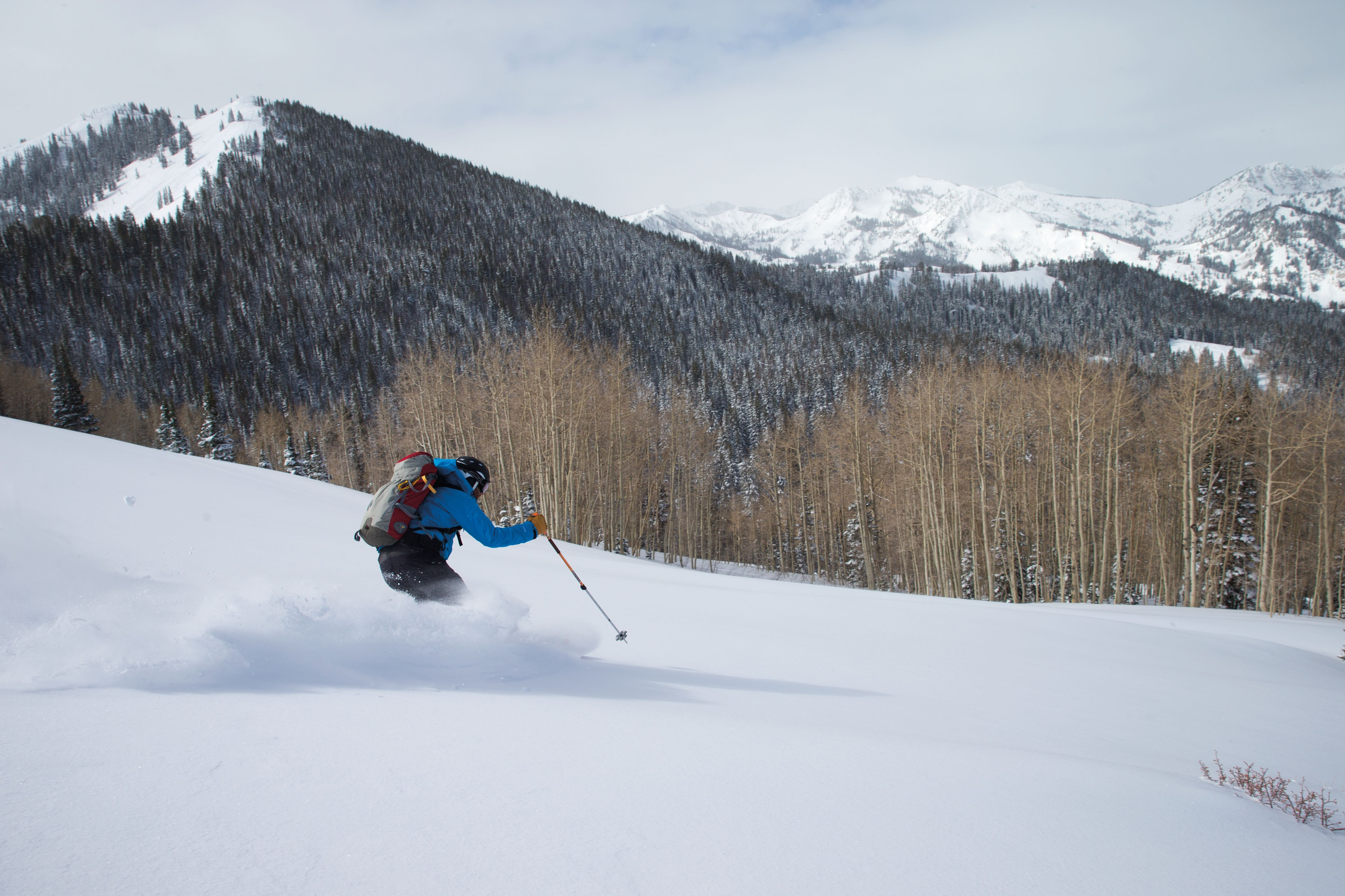 Pcwi 14 interconnect powder skiing rmqeou