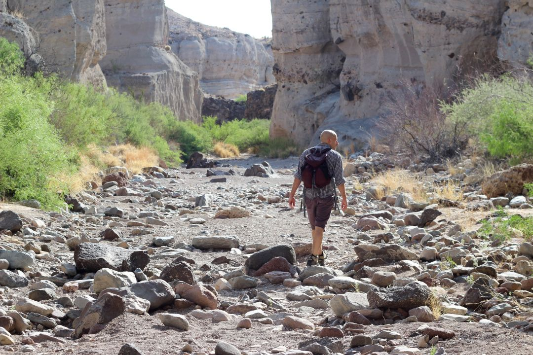 10 Things You Must See, Do and Eat Near Big Bend National