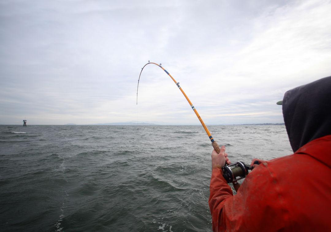 3.fishing wf4hmp