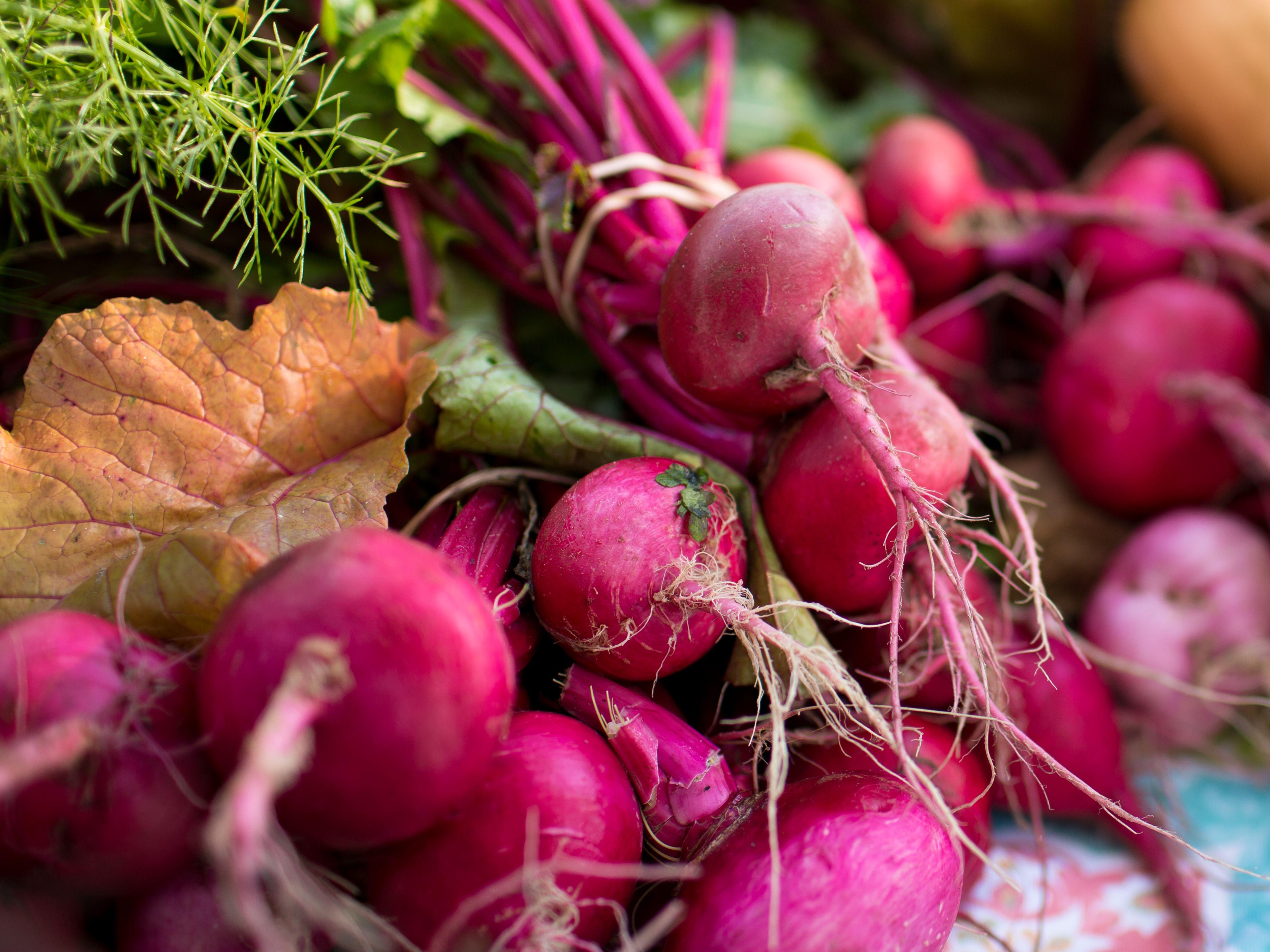 Veggies bradenton farmers market qavmno