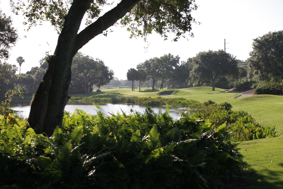 Golfing And Fishing In The Same Neighborhood Sarasota Magazine