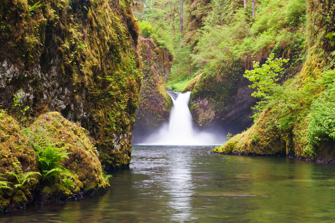 The Pacific Northwest Swimming Hole Hall Of Fame