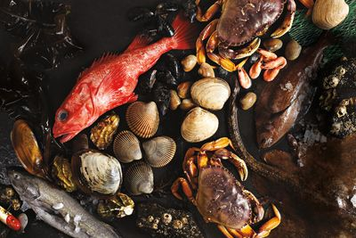 Pomo 0616 seafood spread featured gfefr5