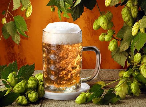 Beer n hops vztwo2