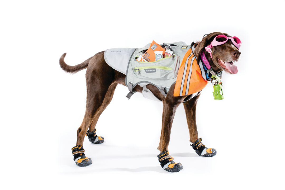 Cosu summer 15 gear hound beuknq