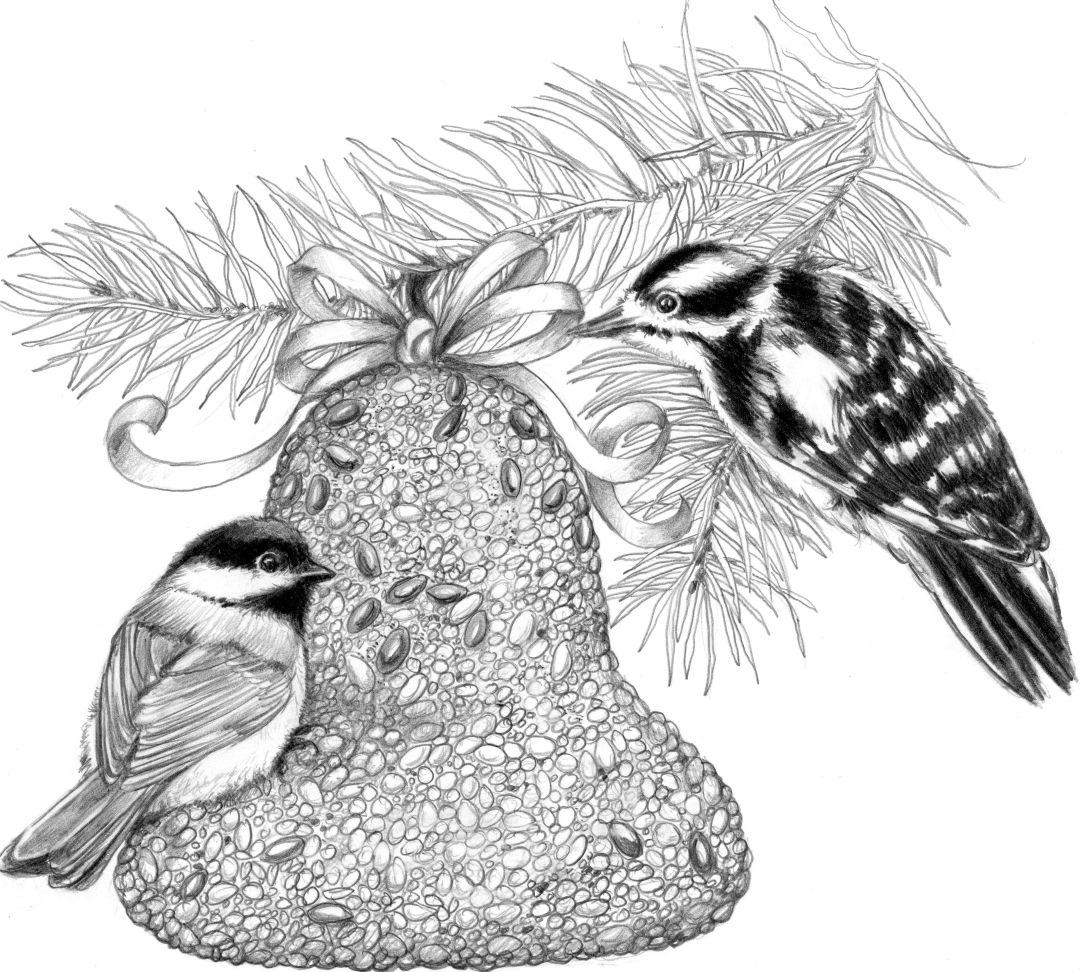 Wonderful Bird Feeders U0026 Houses Seed, Nuts U0026 Suet, Hummingbird Supplies, Squirrel U0026  Bat Stuff, Birdbaths U0026 Wind Chimes, Nature Gifts U0026 Jewelry, Peace Poles U0026  Garden ...