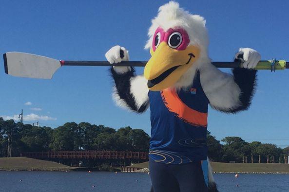 2017 world rowing championships uhekl7