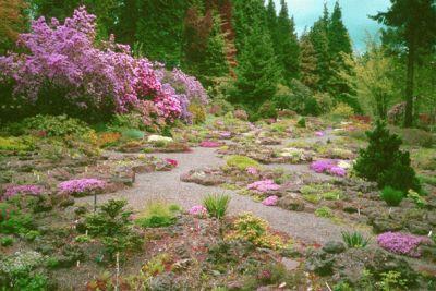Rock garden showcase photo l1dlrx