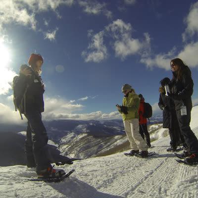 Backcountry snowshoe lbiyle