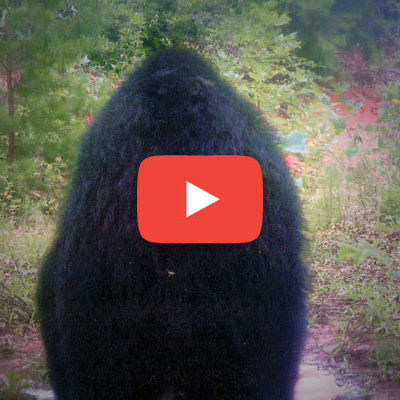 0514 bigfoot video fzyqzl