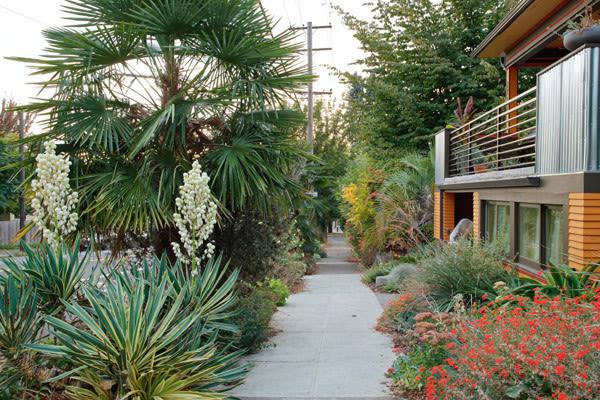 Se portland sidewalk garden tgyabu