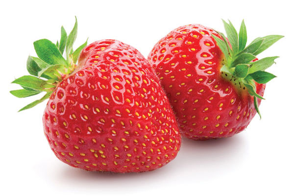 Hi judi strawberries1 qqi7qi