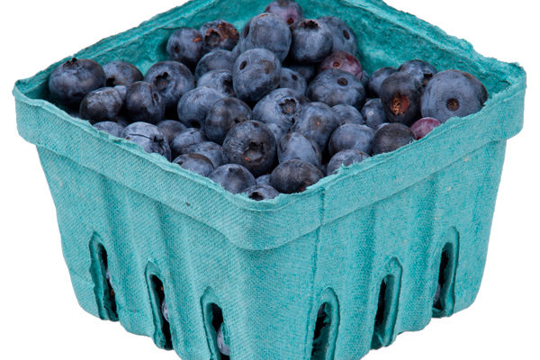 Blueberries in pack j2bcbj