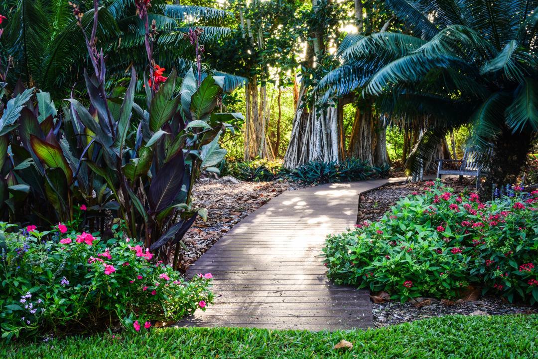 DSC 7430 1 sqlodi - Florida Botanical Garden Florida Botanical Gardens December 5
