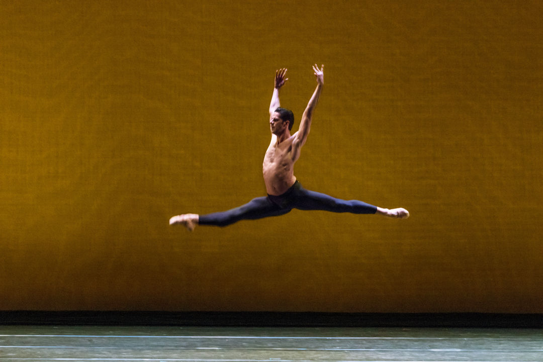 Marcelo gomes   photo by vutti photography qcljdi