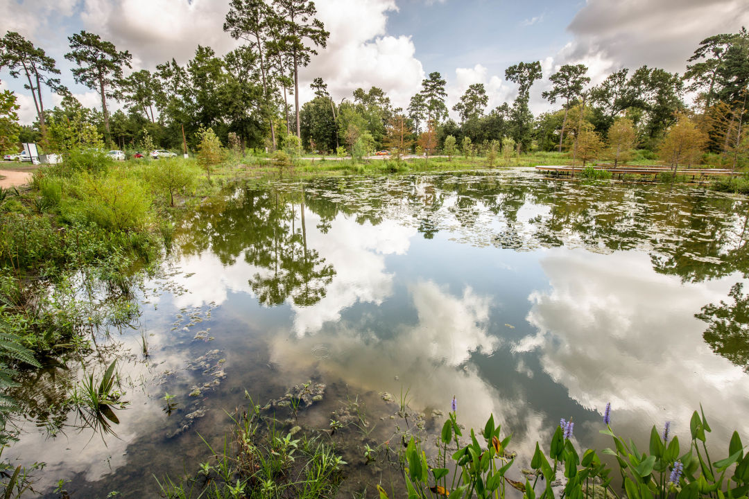 The Houston Arboretum Will Be Pay to Park in 2019 | Houstonia Magazine