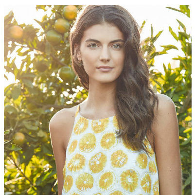 Collage lemon ajvuey