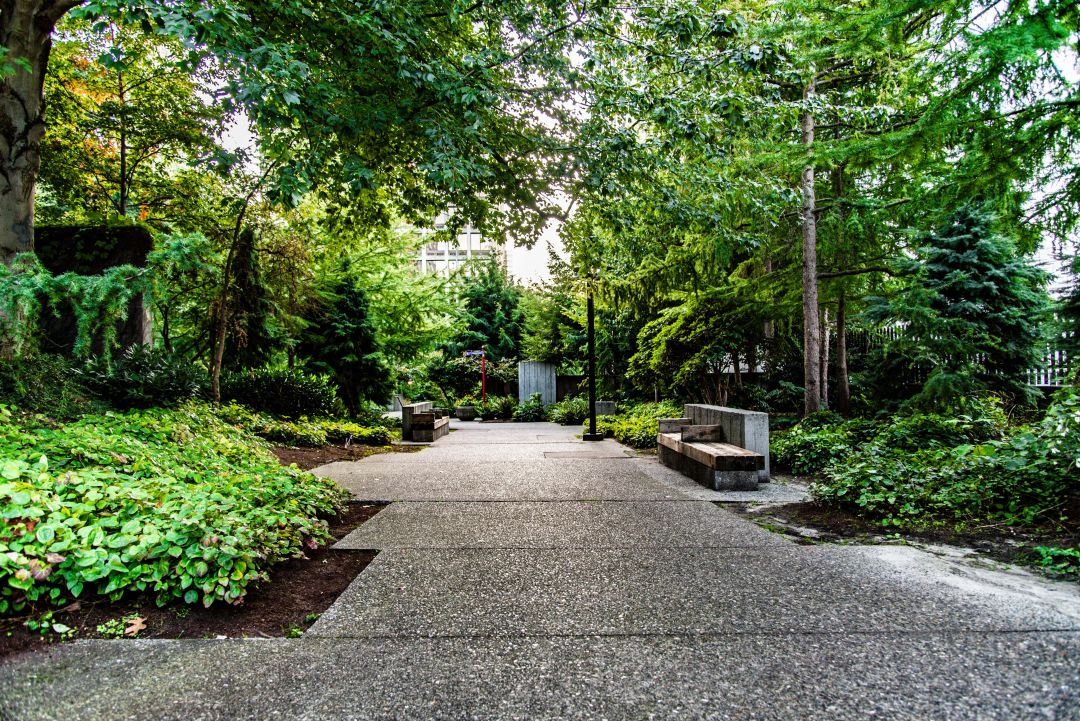 Seattle's Freeway Park. Concrete walkway surrounded lined by trees and a couple of benches.