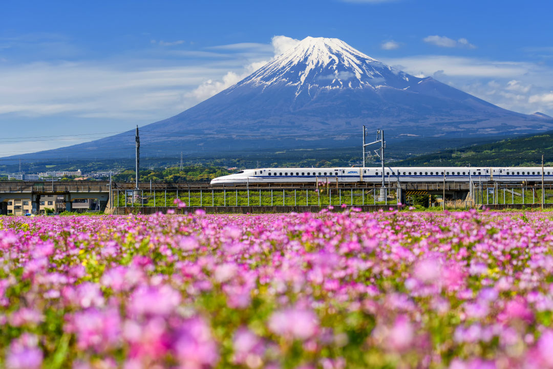 Traveling to Japan for the First Time? Here's What You Must Do