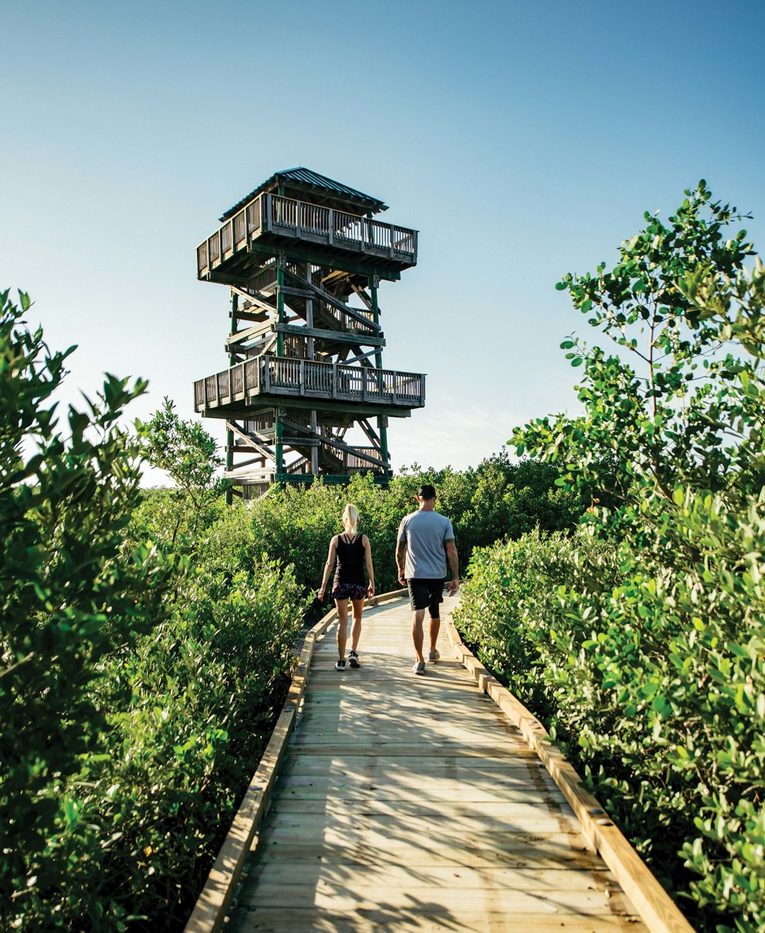 Visitors on their way to the observation tower at Robinson Preserve