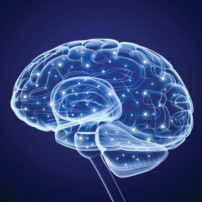 Pulse brain fsr8e3