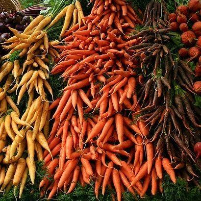 113 portland farmers market tysi7t