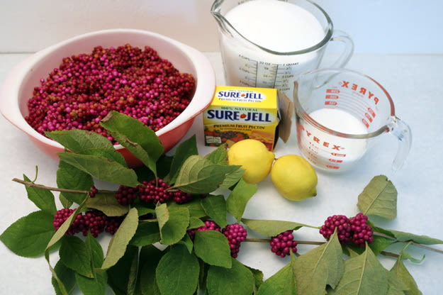 Ingredients1 625x416 xirtvx