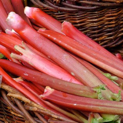 Rhubarb kowqbe