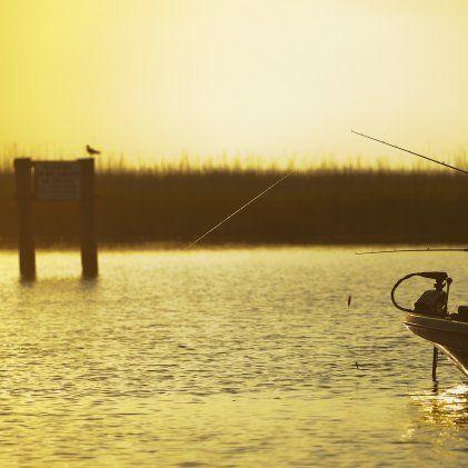 Phoca thumb l flounder fishing   courtesy tpwd ew1fva