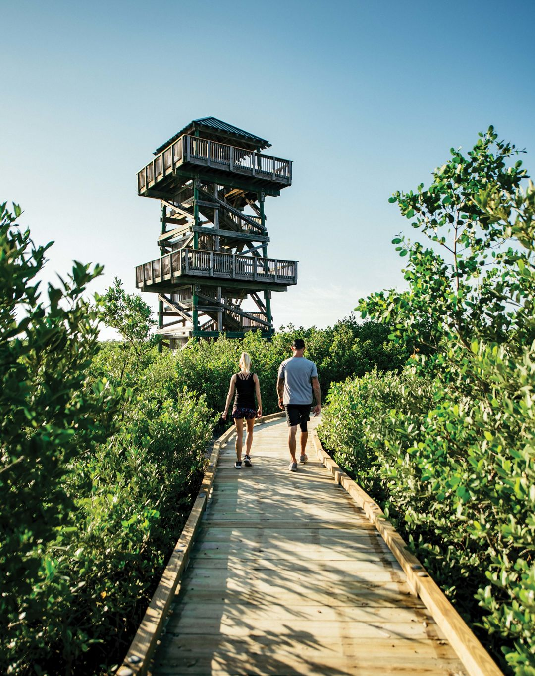 Visitors walking to the observation tower