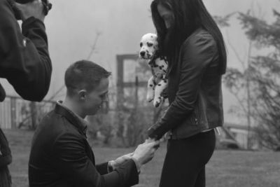 Proposal az0imv