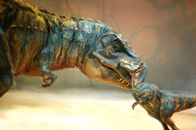 Walking with dinosaurs sg1zls