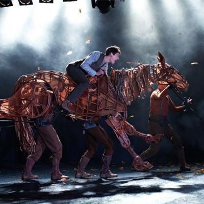 11612 war horse jgricj