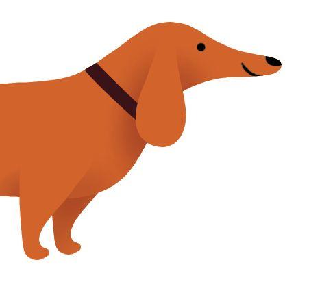 Pomo 0217 pets dachshund illustration b3b8xc