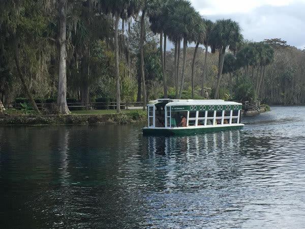 Ocalaglassbottomboatwithtrees600 sm h4xss7