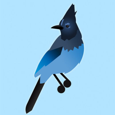 Bird opener amtg0e