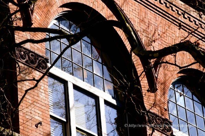 Pioneer square windows 31 zml6je