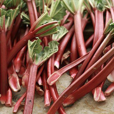 Rhubarb vaaqlq