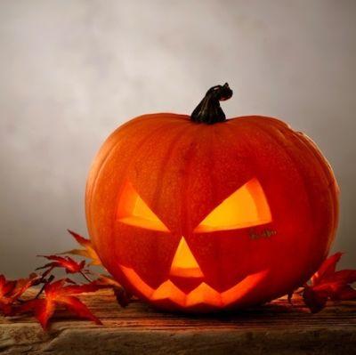 102213 halloween pumpkin n6h46r