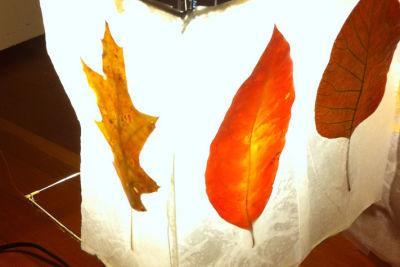 Noguchi lantern leaves pi5xle