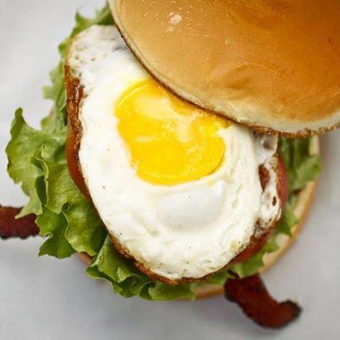 The shack burger resort y6si2d