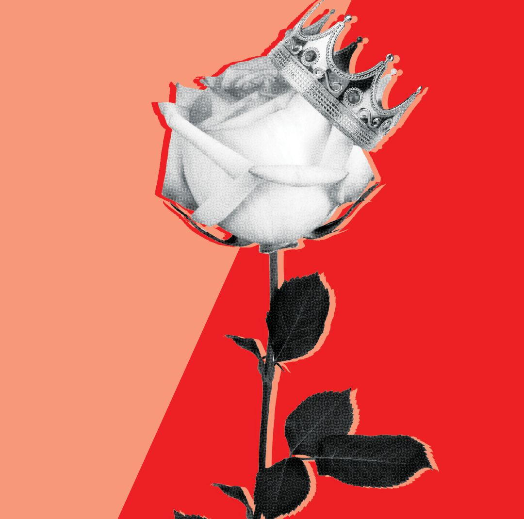 0617 shakedown rose festival bvjh3j