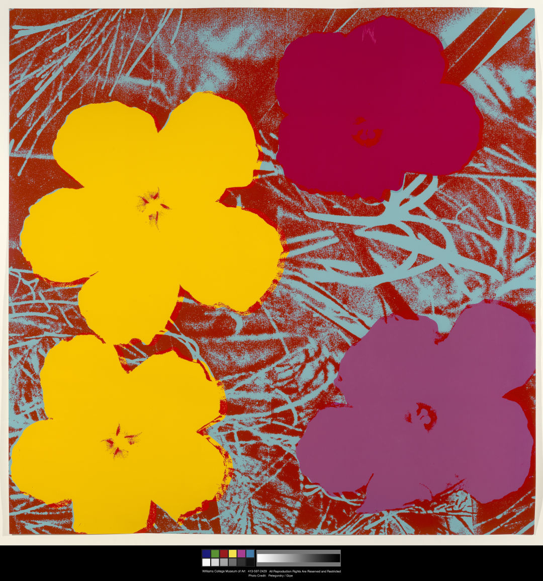 Selby Gardens Finds the Flowers in Pop Legend Andy Warhol\'s Work for ...