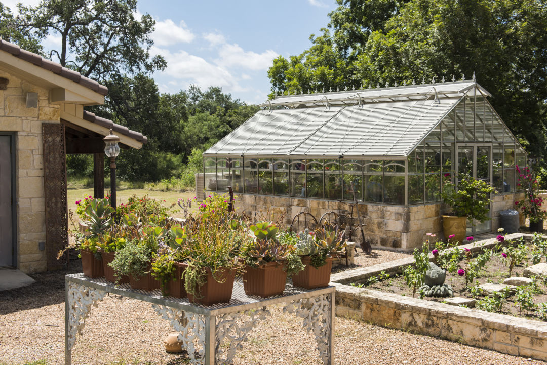 Laurel tree greenhouse lvrplo